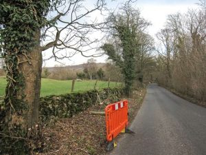 Roadside tree work at Coldwell Parrock