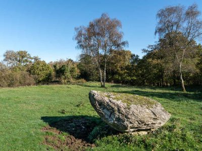 Small erratic at Coldwell Parrock