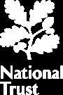 NT_logo_white_thumb
